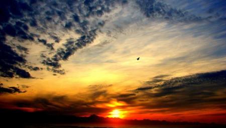john-sunrise-best